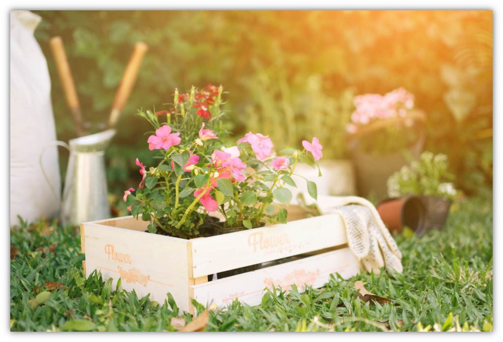 El Jardín de tu Vida
